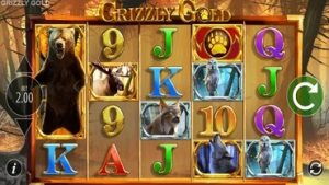 grizly gold slot